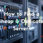 How To Find A Cheap Dedicated Server?
