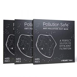 Pollution Safe Reusable Mask