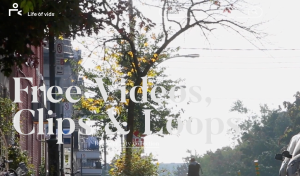 LifeofVids: Top 10 Sites to Download Royalty Free Stock Videos