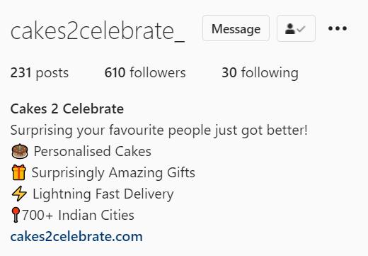 Instagram Bio Example