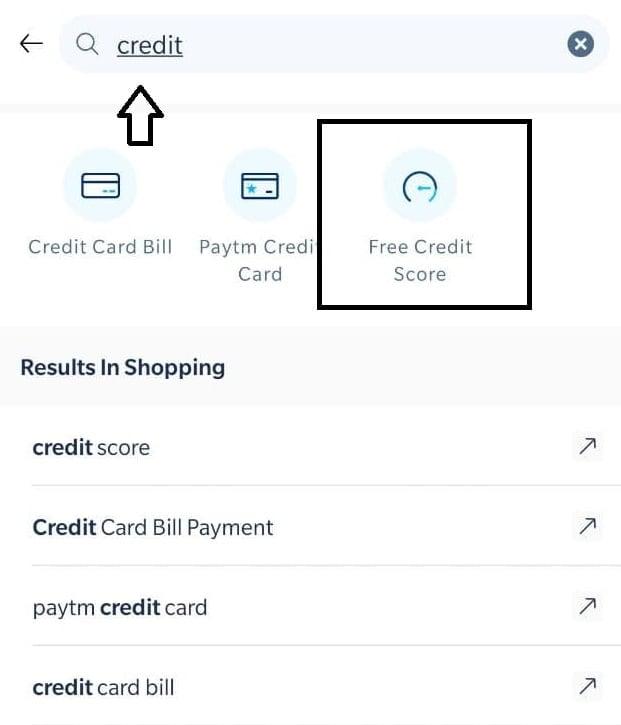 paytm free credit score